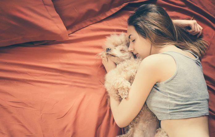 Dormir com cachorro faz mal a saúde?