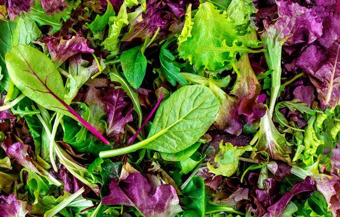 melhores tipos de verduras